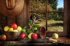 Red and Gold Apples Old Cabin with View royalty free stock images