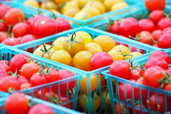 Red and Gold Cherry Tomatoes Stock Photos