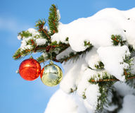 Red and Gold Christmas Balls on Christmas tree branch Royalty Free Stock Images