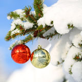 Red and Gold Christmas Balls on Christmas tree branch Stock Photos