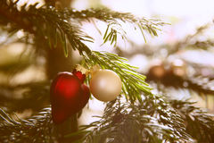 Red and gold Christmas balls hanging on Christmas tree. Retro filter Royalty Free Stock Photo