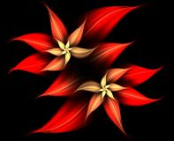 Red and gold flowing flowers abstract Royalty Free Stock Image