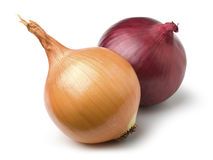 Red and gold onion Stock Images