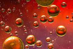 Red, gold and purple oil and water abstract Royalty Free Stock Photo