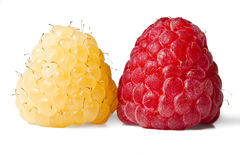 Red and gold raspberries Royalty Free Stock Image