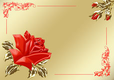Red and gold rose Royalty Free Stock Photos