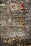 Red and Gold Vines Cling to Old Stone Wall. Slender vine of red and gold leaves cling to the scarred and pitted surface of an old, gray stone wall Stock Photo