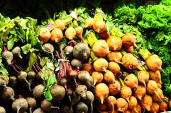 Red and Golden Beets. A pile of red and golden beets in a grocery store Royalty Free Stock Photo