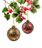 Red and golden Christmas ball hawthorn Royalty Free Stock Photography