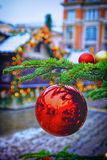 Red and golden decorating balls on the christmas tree Stock Image