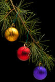 Red golden and purple baubles on pine branch Royalty Free Stock Photography