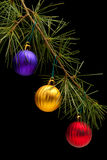 Red golden and purple baubles on pine branch Royalty Free Stock Photos