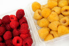 Red And Golden Raspberry. Red and golden raspberries in a plastic store container on a white background Stock Images
