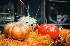 Red, golden and silver pumpkins with glitters on the hay stock photos