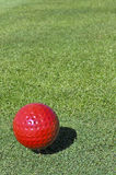 Red golf ball Stock Images