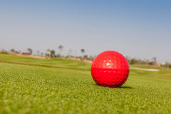 Red golf ball model with blurred golf course background. Royalty Free Stock Photo