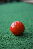 Red Golfball on the Green. A red golfball sitting on the green of a mini putt course Royalty Free Stock Image