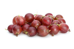 Red gooseberries. Isolated on the white background Stock Image
