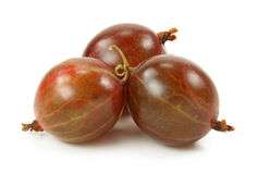 Red gooseberries Stock Photos