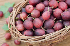 Red gooseberries Royalty Free Stock Image