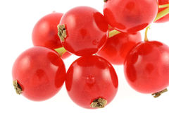 Red gooseberries Stock Photo