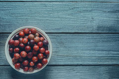 Red gooseberries in a bowl Royalty Free Stock Image