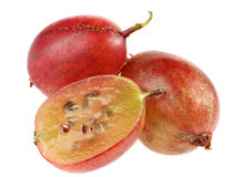 Red gooseberry royalty free stock image
