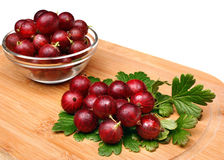 Red gooseberry fruit Stock Photos
