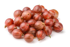 Red gooseberry Royalty Free Stock Photo