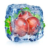 Red gooseberry in ice cube Stock Image