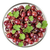 Red gooseberry with leaves in glass bowl isolated on white background Royalty Free Stock Photography