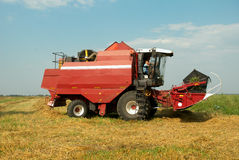 Red grain harvester combine in a field Stock Images
