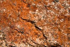 Red granite Stock Images