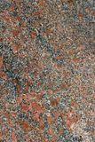 Red granite textured Stock Image