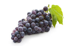 Free Red Grape Royalty Free Stock Photos - 18522198