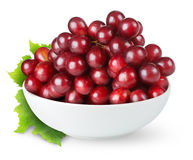 Red grapes in a bowl Stock Photography