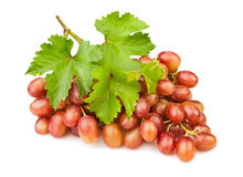 Red grape. On white background Royalty Free Stock Images