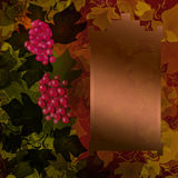 Red grape background Stock Photo