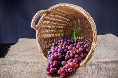 Red grape in basket Stock Image