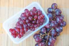 Red grape on branch Royalty Free Stock Photography
