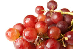 Red Grape Bunch. On white background Stock Photography