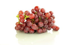 Red grape bunch in white background Stock Image