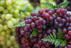 Red grape bunches at the market Royalty Free Stock Photography
