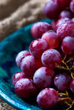 Red grape. Closeup image of red grape covered in water drops Royalty Free Stock Image