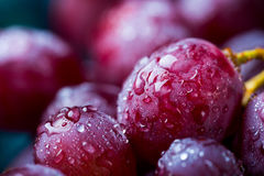 Red grape. Closeup image of red grape covered in water drops Stock Images
