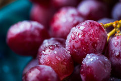 Red grape. Closeup image of red grape covered in water drops Stock Image
