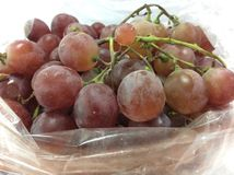 Red grape. Delicious fresh grapes /Red grape nonthaburi Royalty Free Stock Image