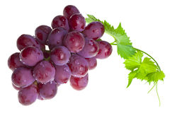 Red grape with foliage Stock Images