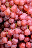Red grape. Fresh grape in beautiful red color Royalty Free Stock Photography