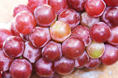 Red grape. Fresh red grape  texture background Royalty Free Stock Photos